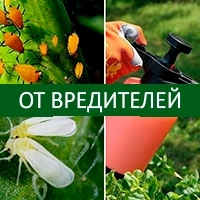 Средства защиты растений от вредителей (инсектициды, акарициды)