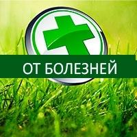 Средства борьбы с болезнями (фунгициды)
